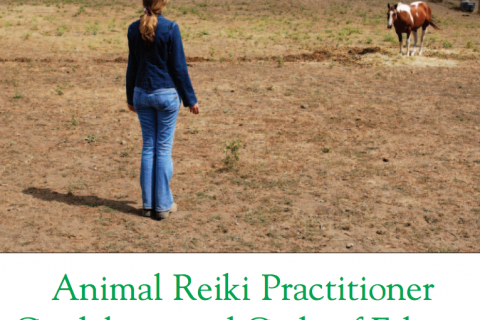 Animal Reiki Practitioner, Guidelines and Code of Ethics