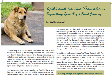 Reiki and Canine Transitions