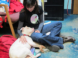 SARA Teacher Karren O'Sullivan volunteering at her local shelter in Oklahoma