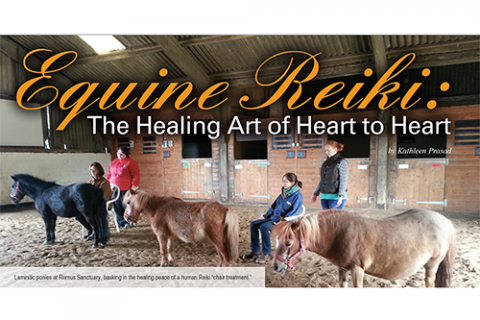 Equine Reiki: The Healing Art of Heart to Heart
