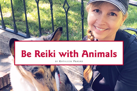 Be Reiki with Animals