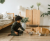 "SARA Featured in Redfin Article: ""Adopting a Shelter Pet: Expert Advice to Prepare Your Home for Your New Furry Friend"""