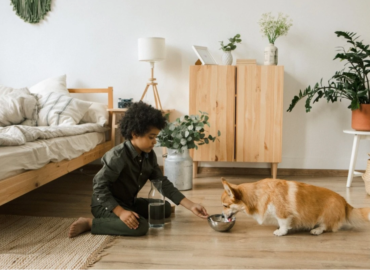 """SARA Featured in Redfin Article: """"Adopting a Shelter Pet: Expert Advice to Prepare Your Home for Your New Furry Friend"""""""