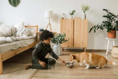 Adopting a Shelter Pet: Expert Advice to Prepare Your Home for Your New Furry Friend